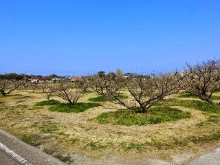 長田屋敷跡