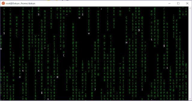 """Fun With Linux: Cara Membuat Tampilan Terminal Menjadi """"Matrix"""""""