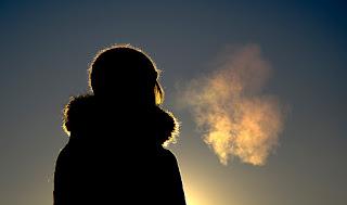 Mengapa Paru-paru termasuk organ ekskresi?