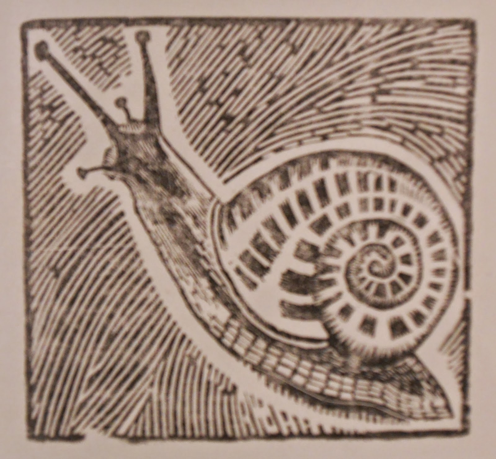 A woodcut of a snail.