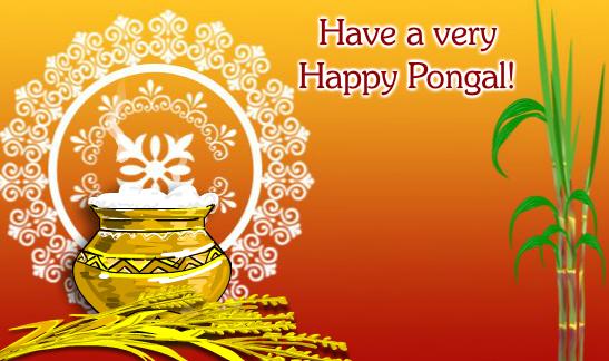 Happy Pongal greetings HD Wallpaper