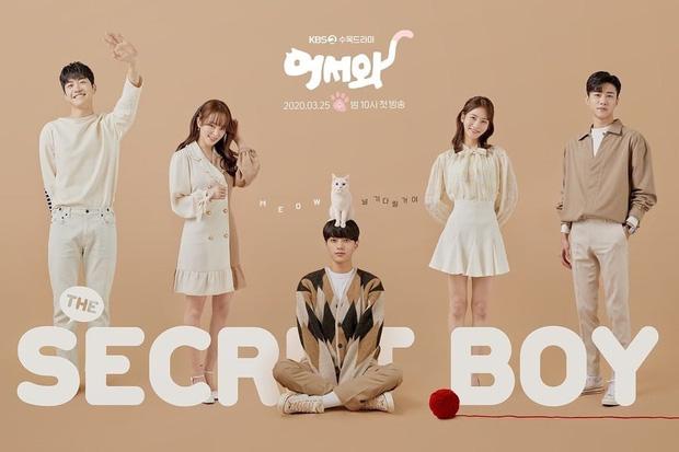 Chàng Trai Bí Ẩn - Meow: The Secret Boy (2020)