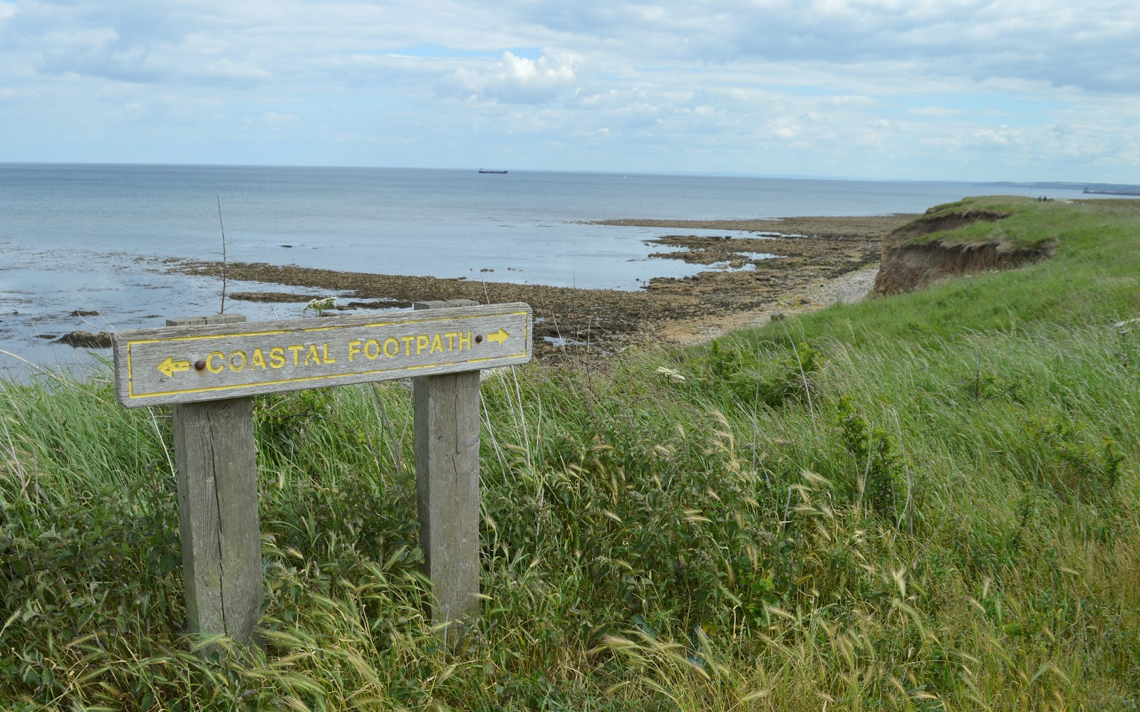 Why We are Loving South Shields this Summer - Coastal Footpath