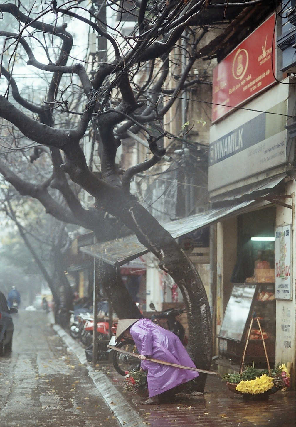 Hanoi weather in December