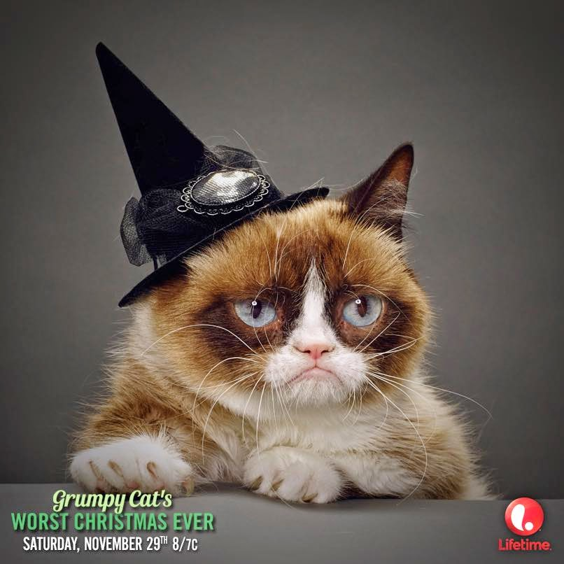 Image Result For Grumpy Cat Christmas