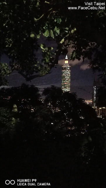 Night Shot of Taipei 101 with trees surrounding it..