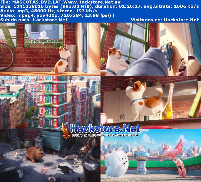Capturas de La vida secreta de tus mascotas (2016) DVDRip Latino + Subs