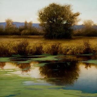 reflejos-atardecer-vistas-naturales