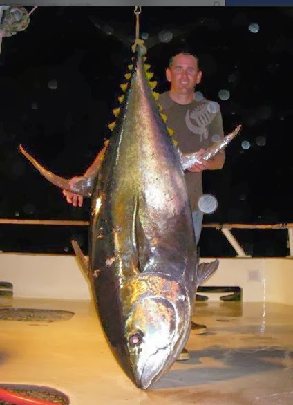 Big Fishes Of The World Yellowfin Tuna Page 2