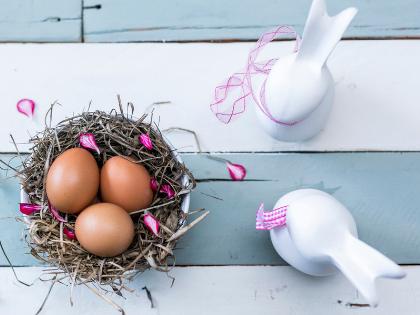 The Empty Nest Syndrome: Cerita tentang Rasa Kesepian