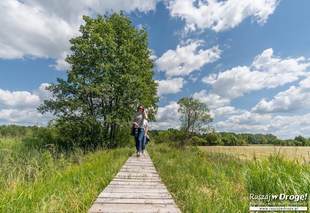 Ścieżka Spławy w Poleskim Parku Narodowym
