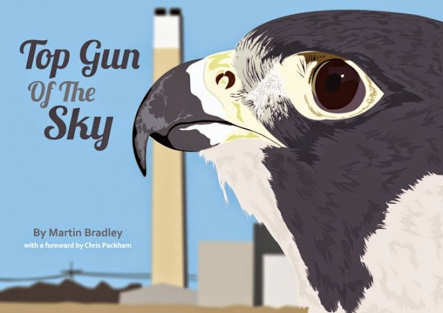 Top Gun of the Sky - Cover image