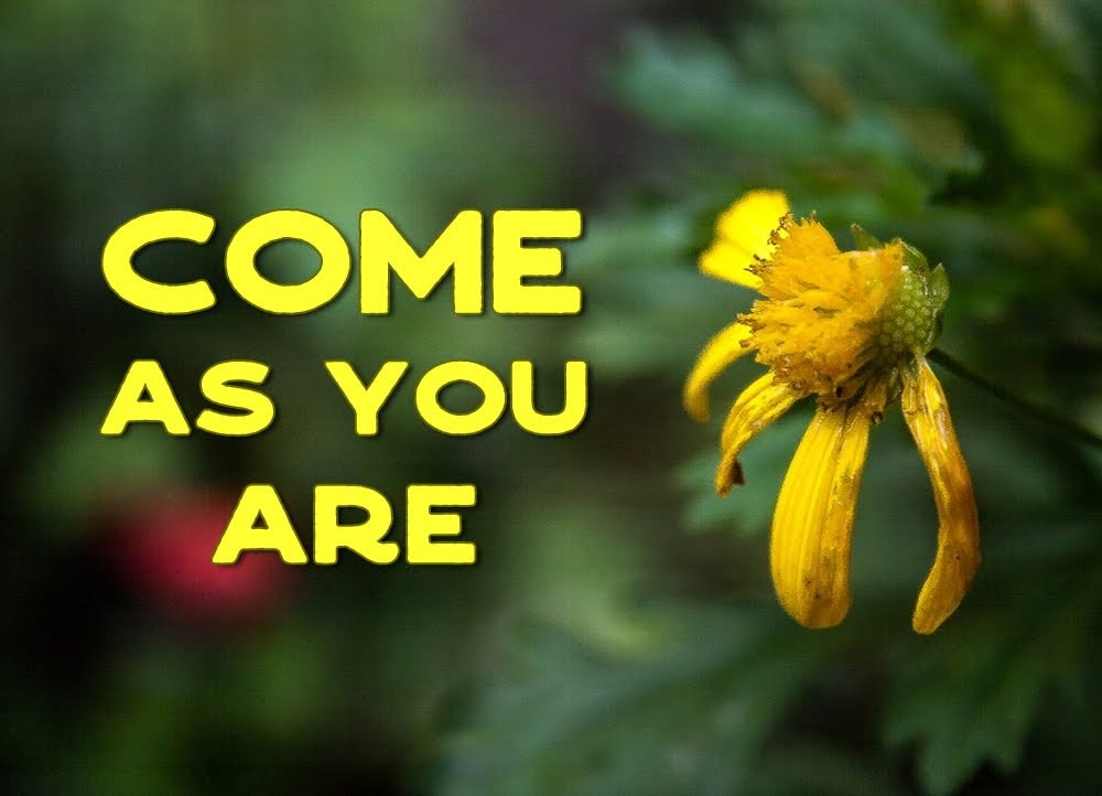Come as you are godsongs song title beside a battered looking yellow flower 1 come as you are thats mightylinksfo