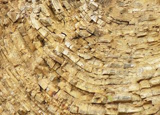 Penjelasan tentang batu sedimen lengkap