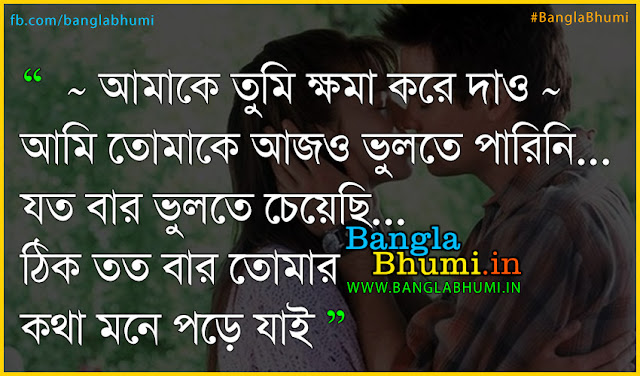Bangla sad love quote in bengali - Ami Prithibite ar nei tomake valobasar jonno