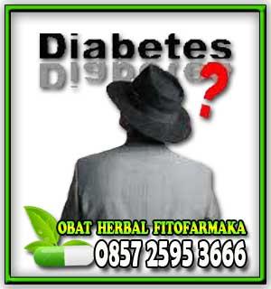 sakit gula, kencing manis, diabetes melitus, gula darah, insulin