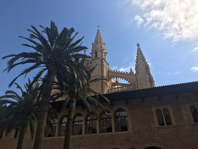 palm trees and the cathedral in palma under a blue sky