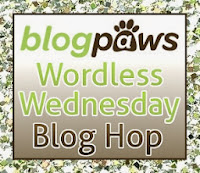 BlogPaws Wordless Wednesday badge