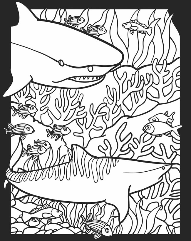 nocturnal animals coloring pages - photo#23