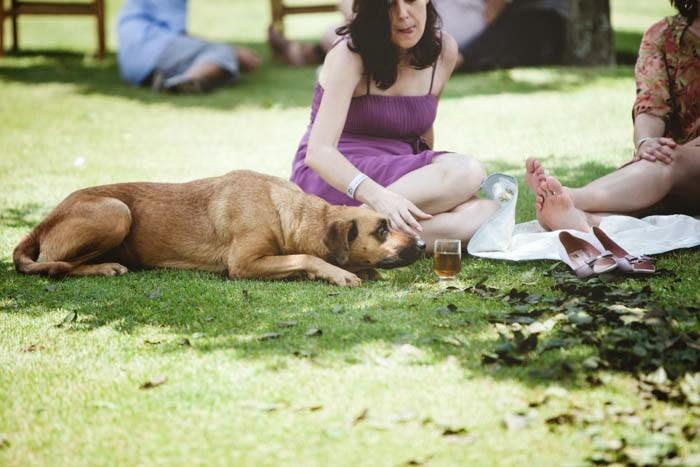 casamento-vale-verde-hora-picnic