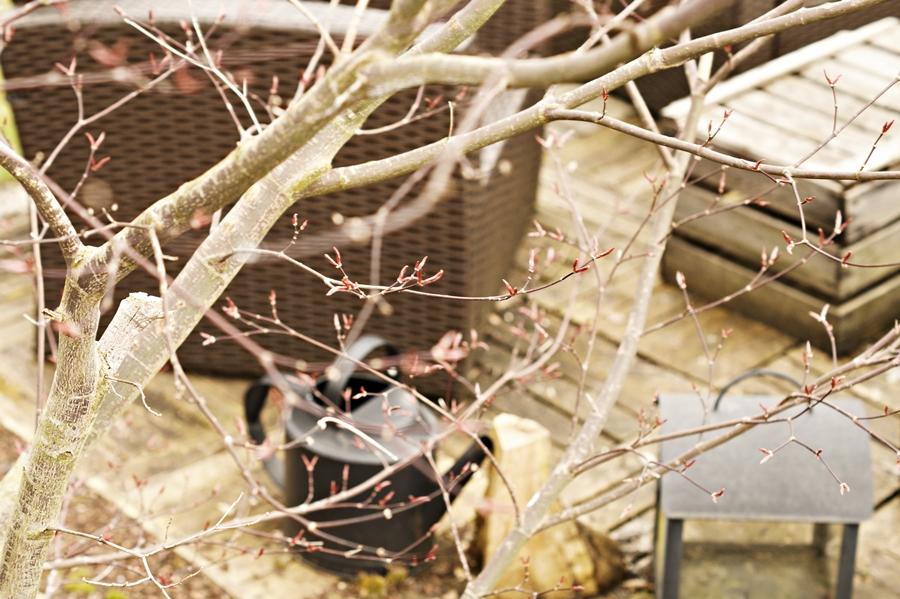 TYPISCH FÜR - Der Frühling ist da!