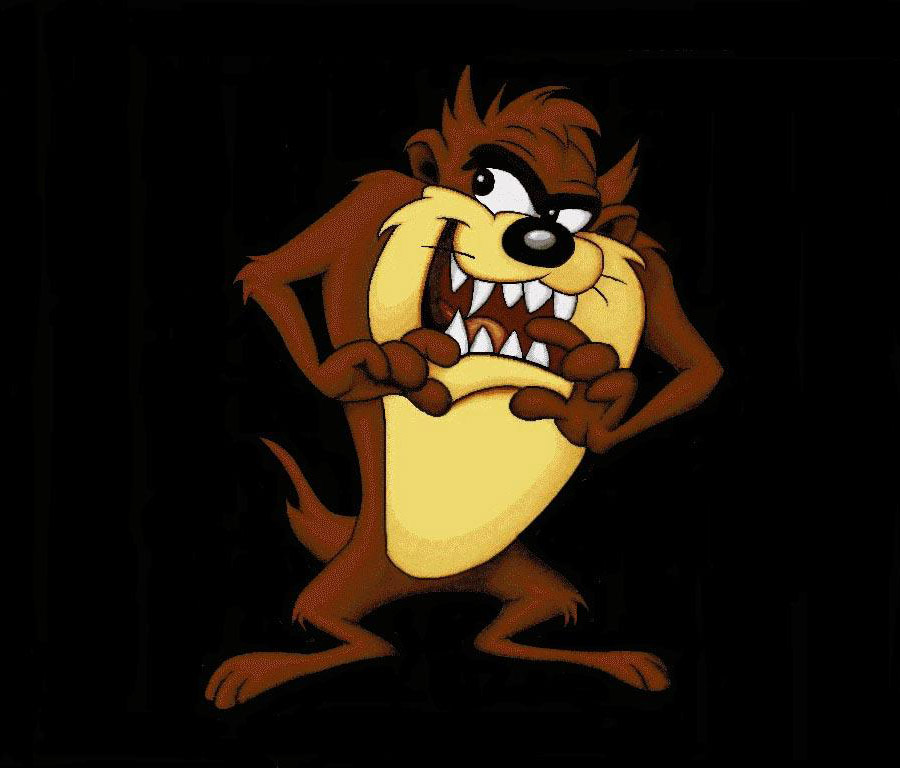 Looney tunes tasmanian devil character wallpaper - Tasmanian devil cartoon images ...