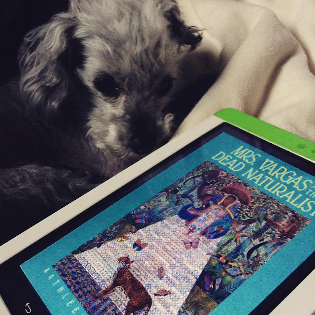 A sleek grey poodle, Murchie, curls up behind a white Kobo with the cover of Mrs Vargas and the Dead Naturalist on it. The cover features a mexican woman dressed in an enveloping blue top and a broad white skirt. She stands in a forest, surrounded by toucans, butterflies, and a small, spotted jungle cat.