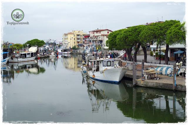 Bootsfahrt in die Lagune von Caorle ausgehend vom Stadthafen - Gartenblog Topfgartenwelt