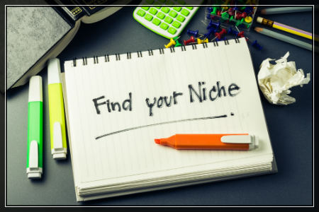 Identify a Niche for your ecommerce business-450x300