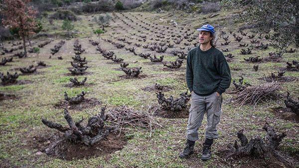 Sierra Natural Pet Food