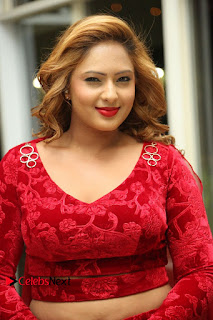 Actress Nikesha Patel Pictures in Red Dress at Araku Road Lo Audio Launch  0114