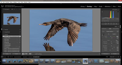 Photoshop Lightroom Classic CC PC Development Module Interface