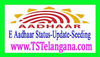 Aadhaar Card Free Download Aadhaar Card Status Aadhar Update Online Aadhaar Card seeding