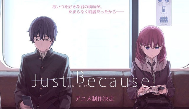 Just Because Subtitle Indonesia