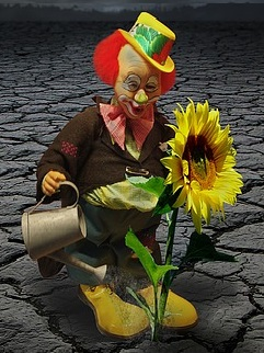 Clown Watering a Sun Flower Growing Out of Cracked Dry Ground