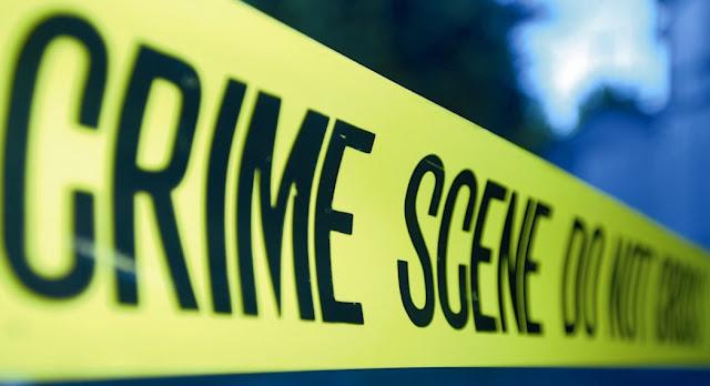 Homicidio doloso y Derecho penal