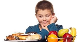Le Cerveau de l'Enfant et de l'Adolescent: L'Alimentation Chez l ...