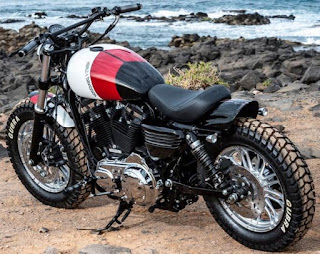 mojo desert forty eight tracker by hd las palmas