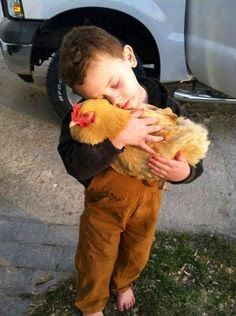 Boy hugs a chicken.