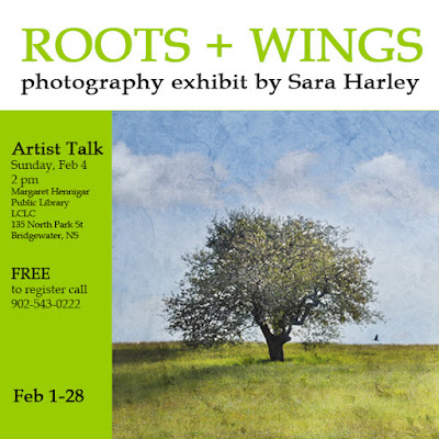 Roots and Wings solo exhibit by Sara Harley