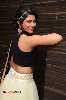 Actress Kruthika Pictures at Rojulu Marayi Movie Audio Release Function  0058.JPG
