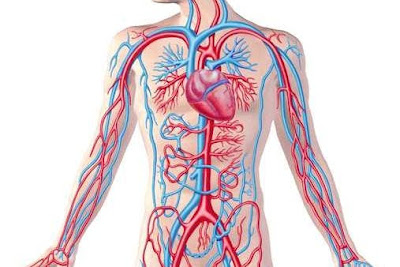 عناوين وارقام اطباء جراحات اوعية دموية بالاسكندرية
