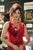 Videesha in Spicy Floor Length Red Sleeveless Gown at IIFA Utsavam Awards 2017  Day 2  Exclusive 23.JPG