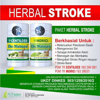 Obat stroke terdaftar BPOM dan Dinkes, obat stroke, obat herbal stroke
