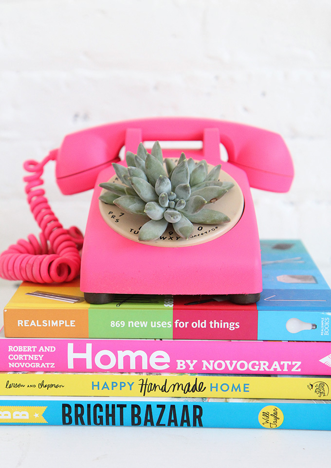 14 Ways to Display Succulents - Succulent in a Phone