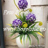 Hoa da pha le tai My Dinh 2