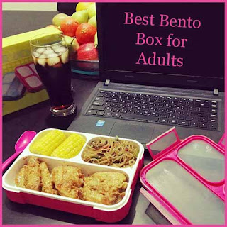 Best Bento Box for Adults