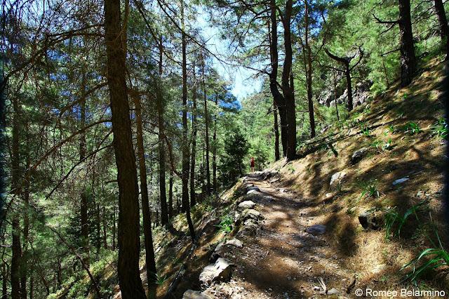 Samaria Gorge Trail Samaria Gorge Hike Crete Greece