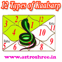 12 Kaalsarp Yoga And Their Impacts In Life, Remedies of Kaalsarp yoga, Astrologer for kaalsarp yoga analysis and solutions, Astrologer For kundli reading for kaalsarp yoga and solutions.