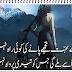 Mohabbat Ki Raha Best Urdu Poetry 2017